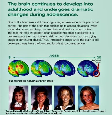 "Child's brain goes through critical developmental processes aged 5-20 and continues until around 22 for girls and 24 for boys. Source: NIDA, ""Cormorbidity: Addiction and Other Mental Illnesses,"" p. 4"