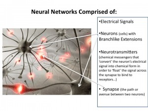 Here's to Neural Networks and Neurotransmitters: Keys to Brain (and Therefore Emotional/Physical) Health!